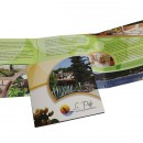 Brochure Le Pitte