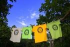 Magliette Somareria dell'Elba