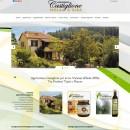 Realizzazione sito Agriturismo Castiglione