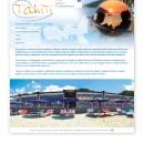 Realizzazione sito Tahiti