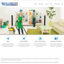 Realizzazione sito Brill Service